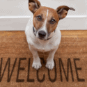 Welcome Home Quotations